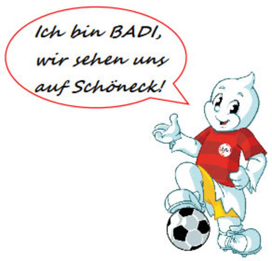 Bfv Schulfussball Aktionstag Badischer Fussballverband E V